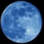 blue-joey-580x368